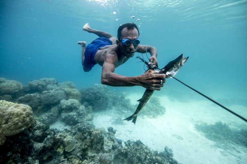 In additional to the nets and lines traditionally used for fishing, the Bajau use a handmade 'pana' for spearing their catch. Pulau Papan, Togian Islands.